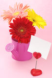 Colorful gerberas in watering can and note holder Royalty Free Stock Photography