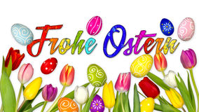 Colorful german happy easter background. Tulips eggs nest basket isolated on white Stock Image