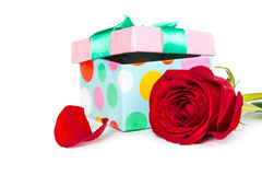 Colorful gift box and rose Royalty Free Stock Photo