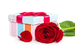 Colorful gift box and rose Stock Photos