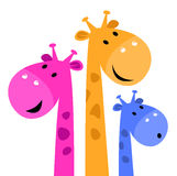 Colorful giraffe family Stock Photo