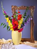 Colorful  gladioluses. Still life with colorful  gladioluses in a vase Royalty Free Stock Photos