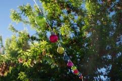 Colorful glass bulbs Royalty Free Stock Photo