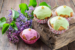 Colorful glazed cupcakes and the branch lilac Stock Photos
