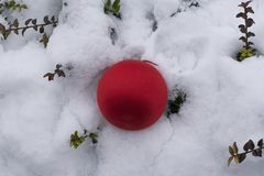 Colorful glowing christmas ball on the snow Stock Image