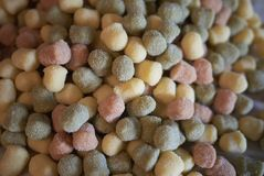 Colorful gnocchi pasta. Ready to be cooked royalty free stock photography