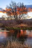 Colorful golden sunrise above a stream, Utah mountains, USA. royalty free stock photo