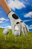 Colorful golf theme with green grass Royalty Free Stock Photo