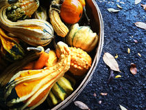 Colorful gourds in a basket Stock Photography
