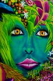 Colorful graffiti in Medellin, Colombia. Colorful graffiti of woman's face with flowers on exterior wall in Medellin, Colombia stock photos