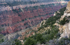Colorful Grand Canyon View Royalty Free Stock Images
