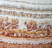 Colorful granite slab Stock Images