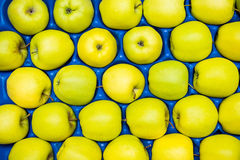 Colorful green apples arranged in blue crate. On the market Royalty Free Stock Photography