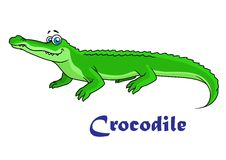 Colorful green cartoon crocodile Stock Photo