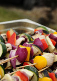 Colorful grill shish. Photograph of fresh shishes for grill Stock Photography