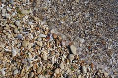 Colorful grit on seashore Stock Images
