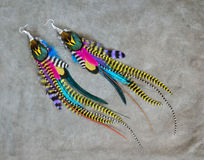 Colorful grizzly feathers earrings Royalty Free Stock Image