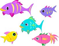 Colorful Group of Fish. Here is a group of fish of different sizes, shapes, and colors Stock Images