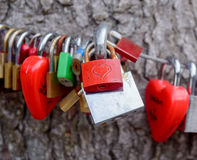 Colorful group of love locks Stock Image