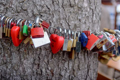 Colorful group of love locks Stock Photo