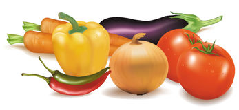 The colorful group of vegetables. Stock Photography