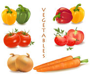 Colorful group of vegetables. Stock Photography