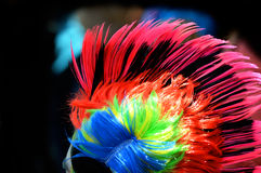 Colorful hair Royalty Free Stock Images