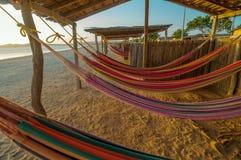 Colorful Beach Hammocks Royalty Free Stock Photo