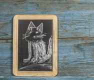 Colorful hand drawing with chalk on blackboard : funny cat. Colorful chalk drawing on blackboard : funny cat hand stock photos