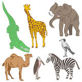 Colorful Hand Drawn African Animals and Birds. Doodle Drawings of Elephant, Zebra, Giraffe, Camel, Marabou and Secretary-bird. Fla Stock Photo