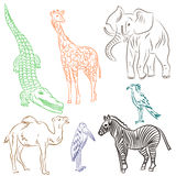 Colorful Hand Drawn African Animals and Birds. Doodle Drawings of Elephant, Zebra, Giraffe, Camel, Marabou and Secretary-bird. Stock Images