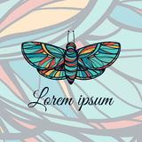 Colorful hand drawn butterfly. Doodle style logo. Stock Images