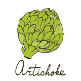 Colorful hand drawn card with artichoke Stock Images