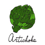 Colorful hand drawn card with artichoke Stock Photos