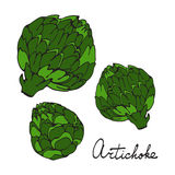 Colorful hand drawn card with artichoke Stock Photo