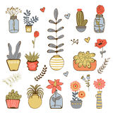 Colorful hand drawn collection of plants Royalty Free Stock Image