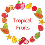 Colorful hand drawn full circle frame with tropical exotic fruit Stock Images