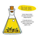 Colorful hand drawn olive oil bottle with sample text Stock Photos