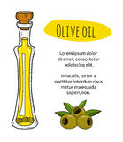 Colorful hand drawn olive oil bottle with sample text Royalty Free Stock Photo