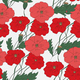 Colorful hand drawn poppies - seamless pattern Royalty Free Stock Images