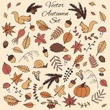 Colorful hand drawn set of vector autumn elements with leaves and animals. Royalty Free Stock Image