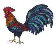 Colorful hand drawn vector illustration of fiery rooster Royalty Free Stock Images