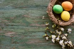Colorful hand painted easter eggs Stock Images