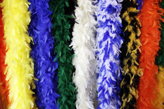 Colorful, hanging feather boas. Royalty Free Stock Photography