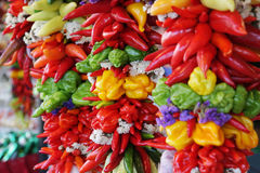 Colorful, hanging pepper assortment. Colorful and decorative, hanging chili pepper assortment Royalty Free Stock Image