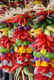 Colorful, hanging pepper assortment. Colorful and decorative, hanging chili pepper assortment Royalty Free Stock Images