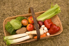 Colorful harvest Stock Photos