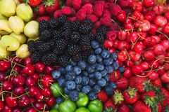 Colorful harvest of summer berries and fruits. Top view and soft focus. Assorted fresh bright and juicy berries - blueberries, strawberries, raspberries Royalty Free Stock Photo