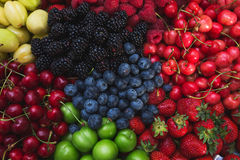 Colorful harvest of summer berries and fruits. Top view and soft focus. Royalty Free Stock Images