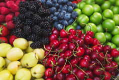 Colorful harvest of summer berries and fruits. Top view and soft focus. Assorted fresh bright and juicy berries - blueberries, strawberries, raspberries Stock Images
